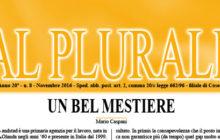 Al Plurale n.8/2016