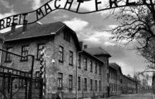 27 Gennaio Giorno della Memoria - Per Ricordare le Vittime dell'Olocausto